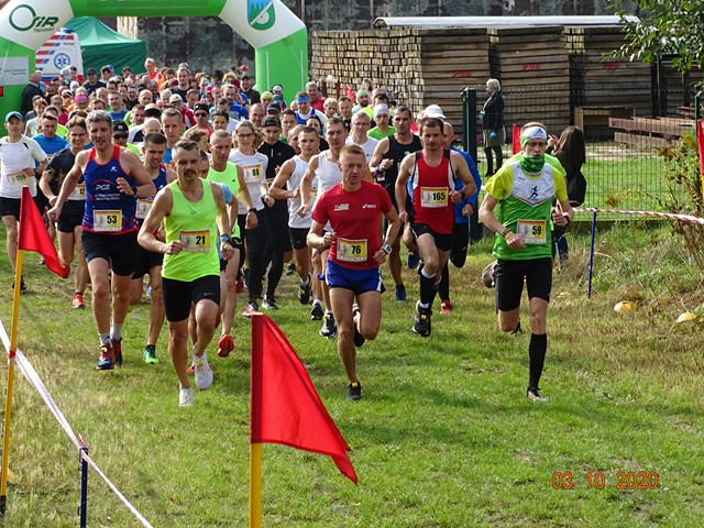 Na zdjęciu duża grupa biegaczy.