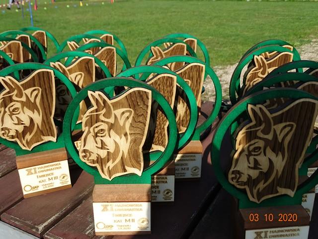 Drewniane trofea w kategoriach wiekowych - płaskorzeźba - głowa żubra.